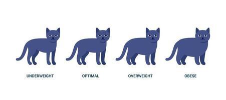 índice de masa corporal del gato, gráfico de peso de la mascota. bmi salud, bajo peso, óptimo, sobrepeso y obesidad. casa animal gato negro. ilustración vectorial vector