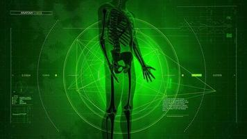 fundo gerado digitalmente de varredura médica do corpo humano com dados que aparecem em um visor virtual verde video