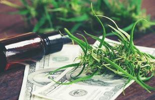 cannabis with cannabidiol cbd extract on dollar banknote photo