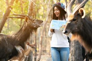 Mujer mirando y alimentando a los animales en el zoológico. foto
