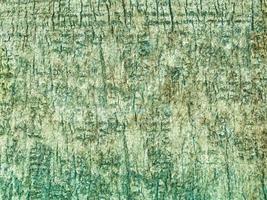 textura de madera verde azulado foto