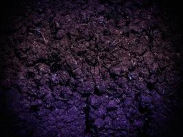 textura de tierra oscura en el jardín foto