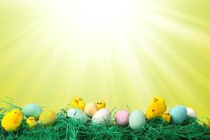 imagen de vacaciones de pascua con pollitos huevos y pasto foto