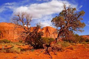 paisaje del desierto del valle del monumento foto