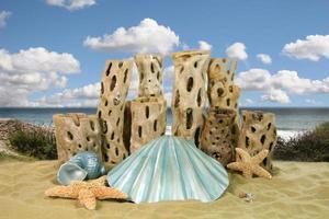 Mermaid Shell Ocean Background photo