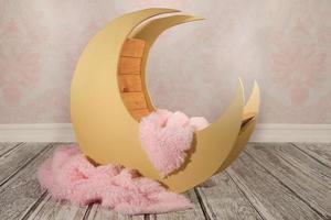 Fondo digital para insertar bebés, mascotas o niños durmiendo foto