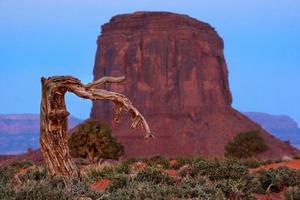 Monument Valley Landscape photo