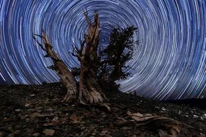 paisaje pintado de luz de estrellas en pinos bristlecone foto