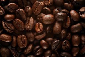 primer plano de granos de cafe foto