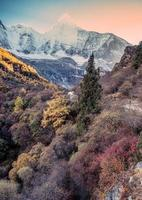 Colorful autumn forest with holy mountain at Yading photo