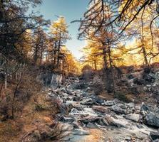 Waterfall flowing on rocks in autumn pine forest photo