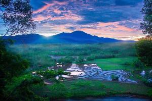 Vista de los campos de arroz por la mañana con un ambiente brumoso por la mañana en la montaña foto