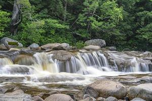 Summer on the swift river, middle falls in early morning photo