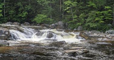 Verano en el río Swift, medio cae temprano en la mañana. foto