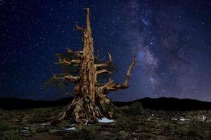 paisaje pintado de luz de camping y estrellas. foto