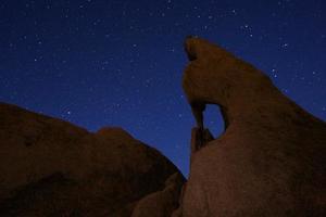 estrella de larga exposición sobre el parque nacional joshua tree foto
