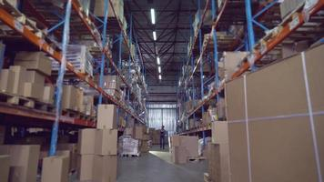 Male working in storehouse. video