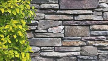 Bushes Against Stone Wall video