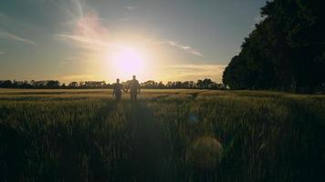women and men walking at countryside. video