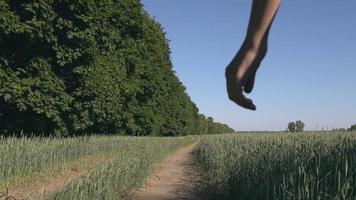 femelle avec bouledogue français à l'extérieur. video