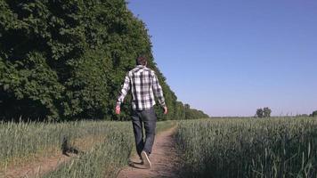 gars marchant avec bouledogue français en été. video
