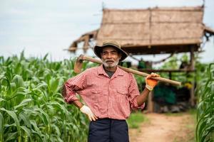 Portrait farmers working in the corn-field photo