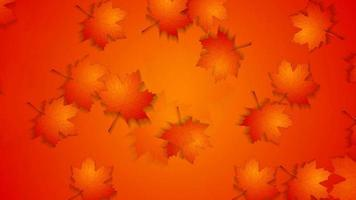 Abstract red orange autumn background with maple leaves video