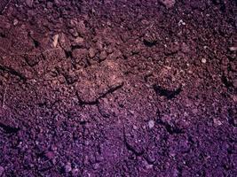 textura tierra morada foto