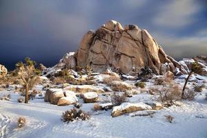 Snowy Landscape in Joshua Tree National Park photo