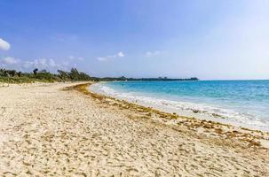 Tropical mexican beach 88 Punta Esmeralda Playa del Carmen Mexico photo