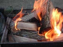 Fire burns in the woods on wood photo