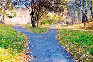 gravel foot path crossroad in autumn park, way choosing concept photo
