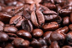 macro de granos de cafe foto