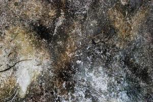 Wall texture with damaged paint full of mold photo