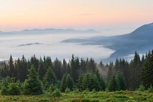 Travel, trekking. Summer landscape - mountains, green grass, trees and blue sky photo