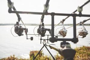 cañas de pescar carpas de pie sobre trípodes especiales. bobinas caras y un sistema de radio de crochet foto