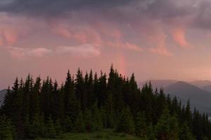 Amanecer de color en la ladera de la montaña boscosa con niebla foto