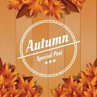 Wooden Autum Color Background vector