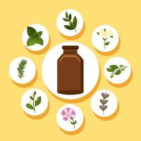 nine essentials oils icons vector