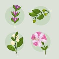 four spring nature icons vector
