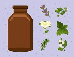 seven essentials oils icons vector