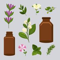 ten essentials oils vector