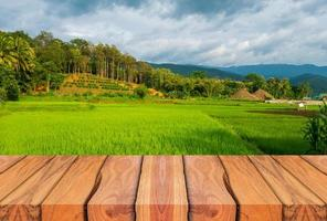 Wooden planks and beautiful natural scenery of green rice fields in the rainy season. photo