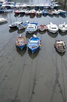 barcos amarrados en un muelle foto