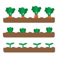 Set of 3 garden beds with different growing vegetables and plants. Flat spring garden illustration. Gardening icons. Vector illustration in cartoon flat style. Urban farming and agriculture concept