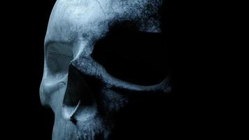 Human skull on an isolated black background video