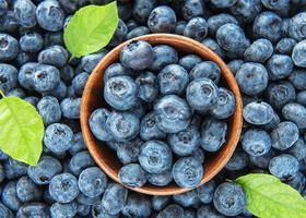 Blueberries as a natural food background photo