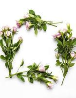 borde floral con espacio en blanco foto