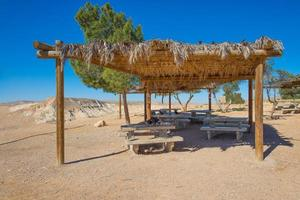 Oasis with benches in the desert photo