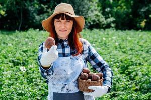 La agricultora sostiene papas en una canasta de mimbre con un sombrero de paja y rodeada de muchas plantas en su huerto foto